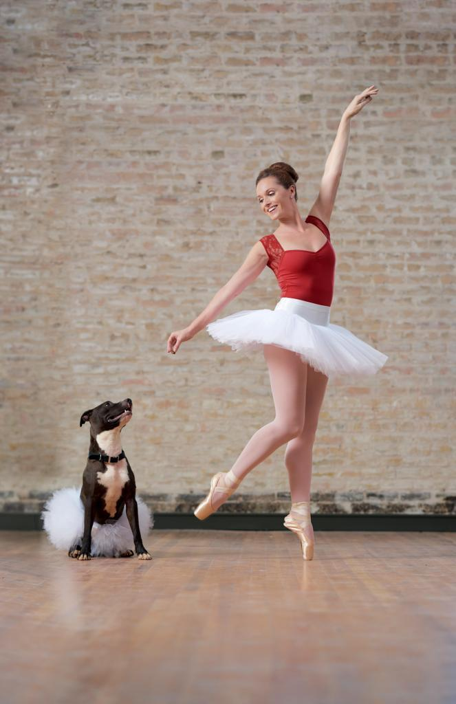 City of Taylor Texas - Claire the Adoptable Dog - Dancing for Treats - or not - with Eryn the Ballerina