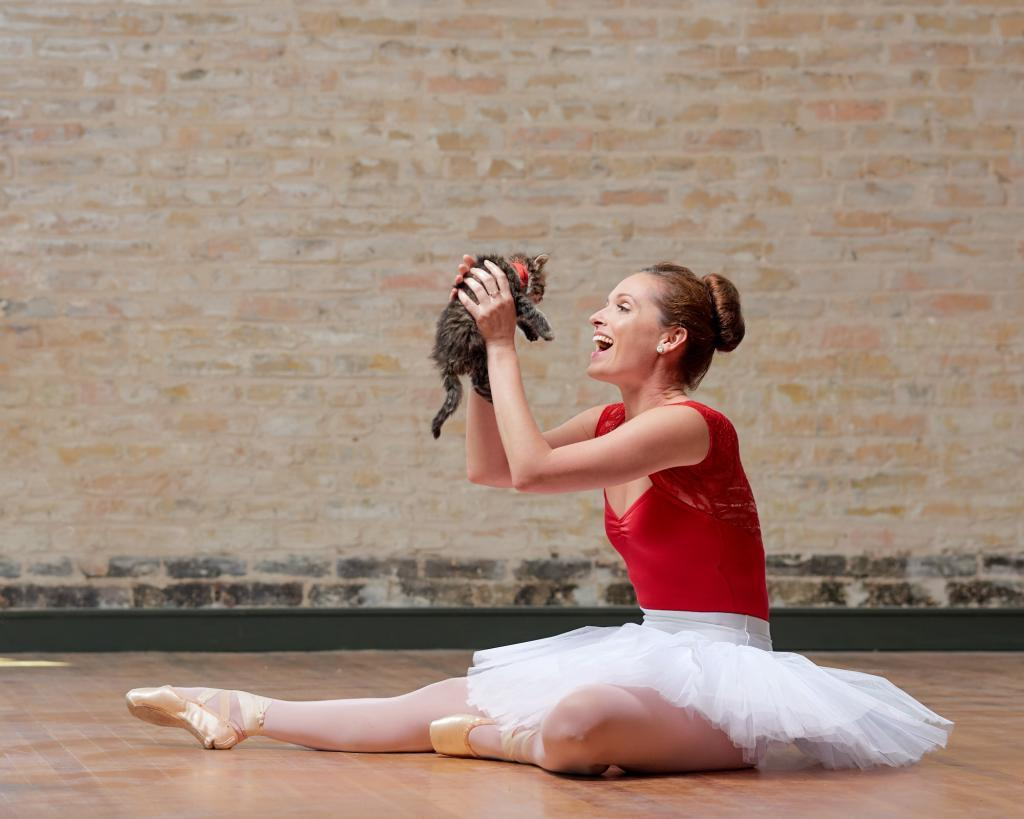 City of Taylor Texas - Adoptable Kitten Cuddles with a Ballerina