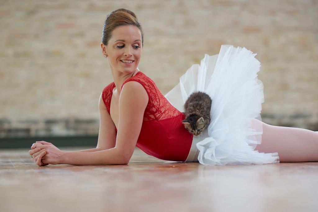 City of Taylor Texas - Adoptable Kitten Cuddles with a Ballerina