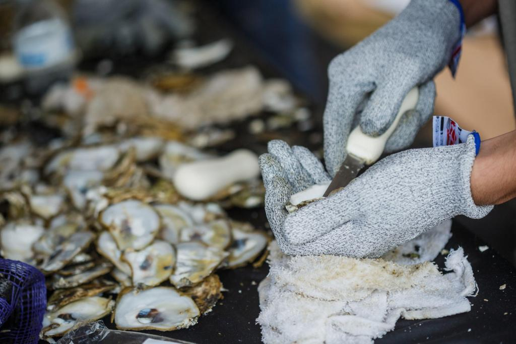 Austin event photography of a chef shucking oysters at oysterfest on Seaholm lawn at the old power plant.
